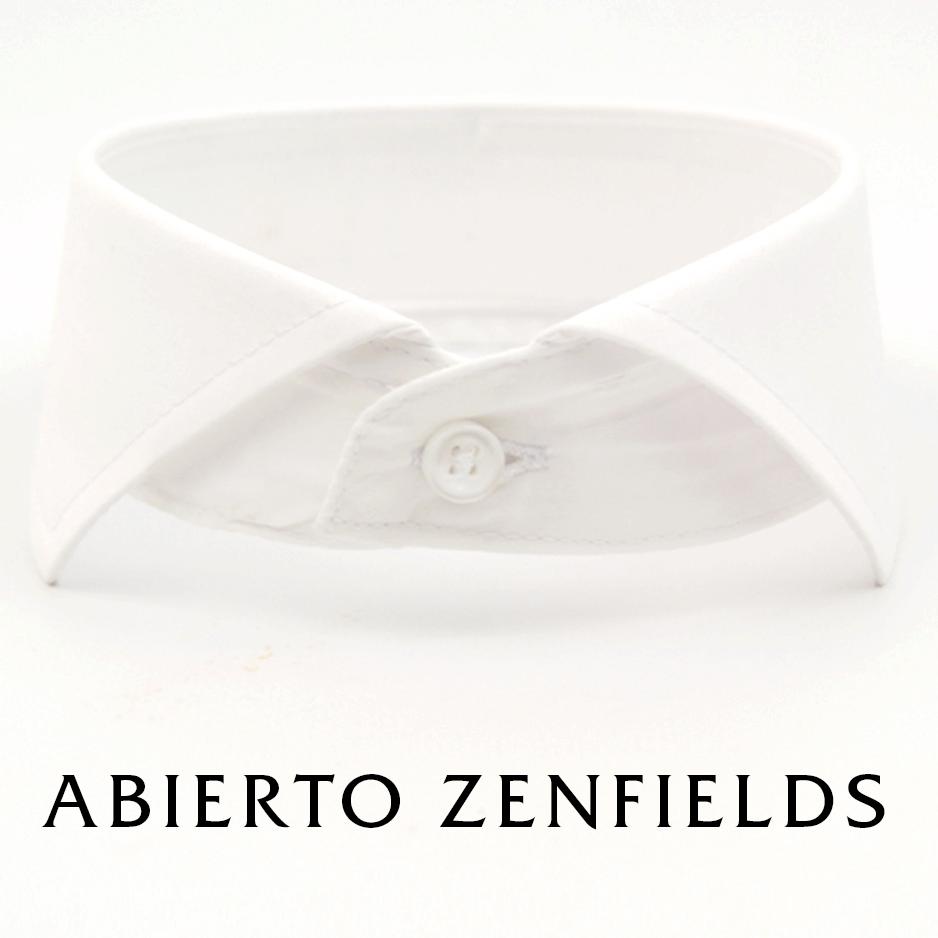 Abierto Zenfields